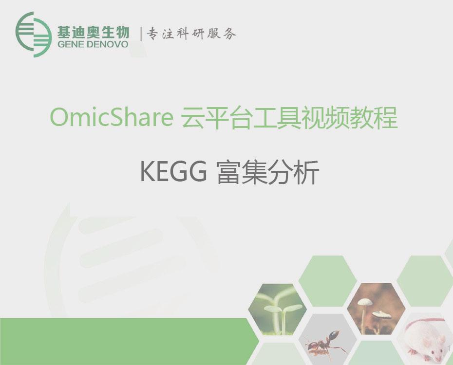 OmicShare Tools 不会编程也可绘制SCI文章图表